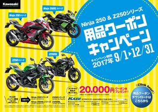2017-campaign_005.jpg