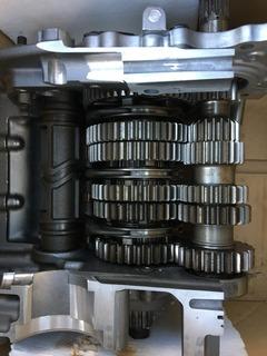 389F32DF-DCD0-4C8A-BC5B-46F574C1B349.jpeg