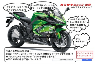 Ninja1000DM裏.jpg